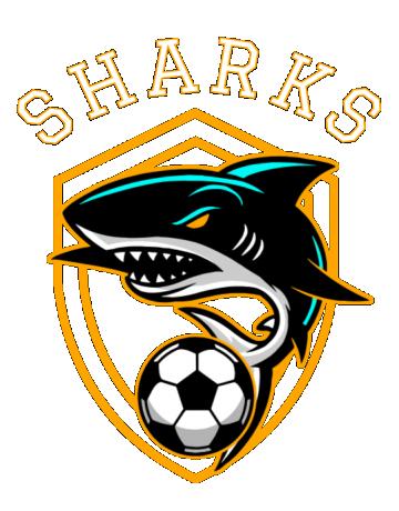 Sharks soccer team