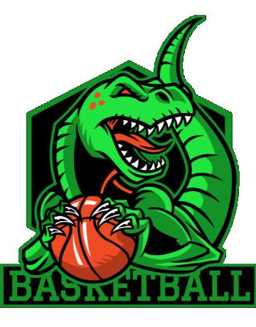 Basketball raptors