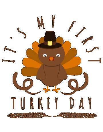 My first turkey day